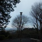 冬の京都観光|京の冬の旅で特別拝観を巡る旅