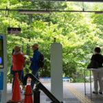 将軍塚を登る登山コース|京都の山ガール