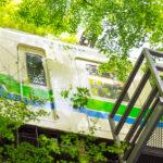 夏の京都観光|夏旅で巡る京都観光